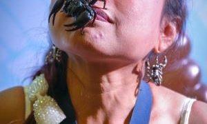 いいえ私はサソリ座の女~タイのサソリ女王がパタヤでギネス記録更新