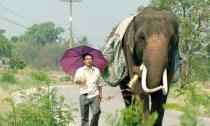 タイ映画「ポップ・アイ」が18日から順次日本で劇場公開へ