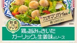 カット野菜にあえるだけでタイ料理ができる「野菜DEアジアシリーズ」丸大食品が新発売