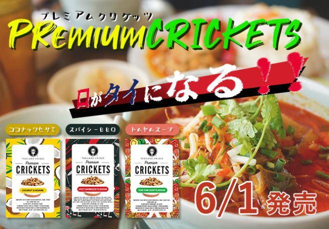 Premium CRICKETS(プレミアム クリケッツ)